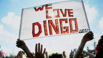 Dingo-fanit kyltti
