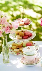 Royal_Albert_Tea_Party_LS_6