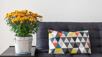 sohva, kukat, tyyny