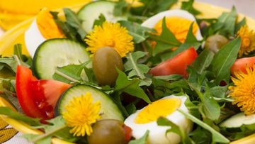Voikukka salaatti (1)