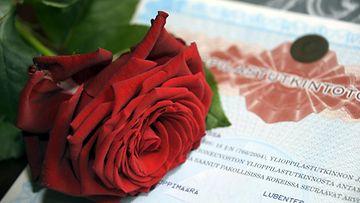 ylioppilastodistus, ruusu