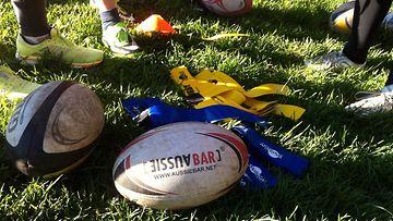 Toimitus testasi rugbytreenit (4)