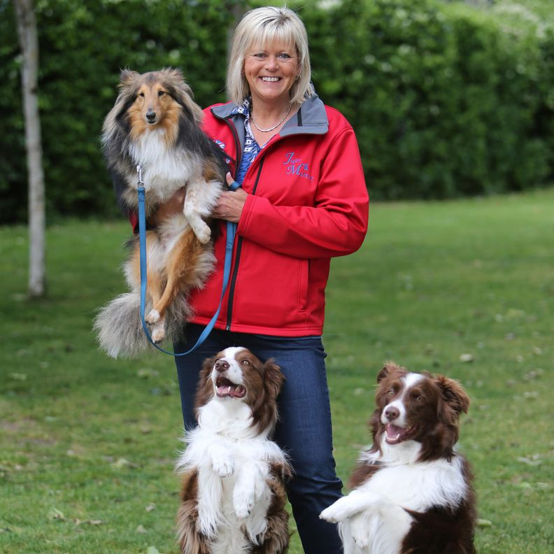 Britain's Got Talent voittaja O'Dwyer koiriensa kanssa.