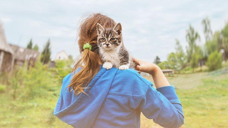Tyttö kantaa kissaa