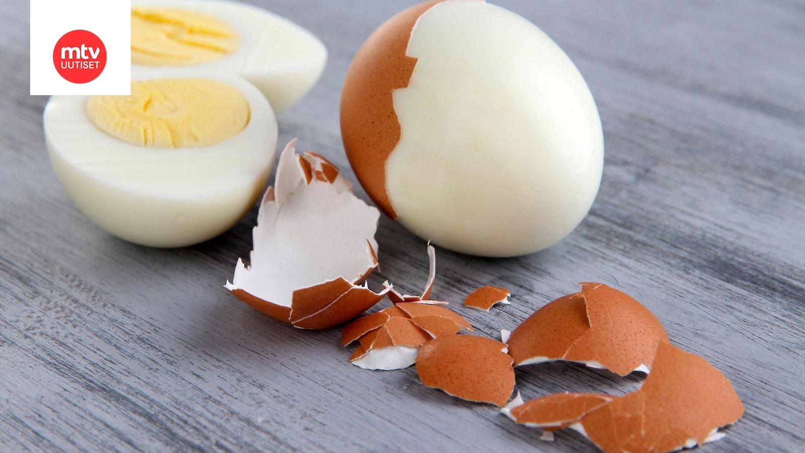 Keitetty Kananmuna Säilyy Jääkaapissa