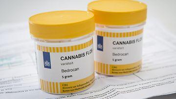 19484388 Cannabis lääke