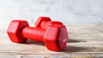 käsipainot, fitness, treeni