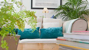 olohuone, sohva, kasvit