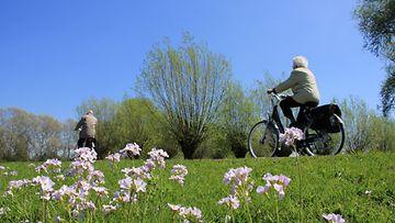 Pari pyöräilee (2)