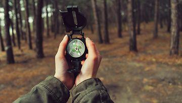 Retkellä metsässä (4)