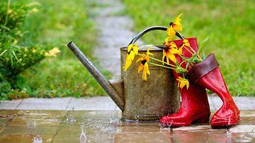 sateinen puutarha