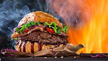 hampurilainen tulessa