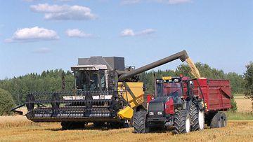 Puimuri ja traktori