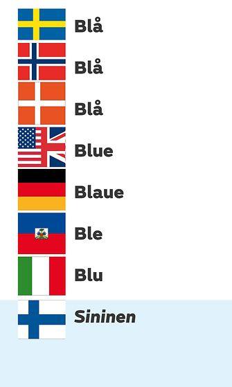 sanakäännökset-netti-Blue (00000002)