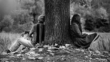puun alla