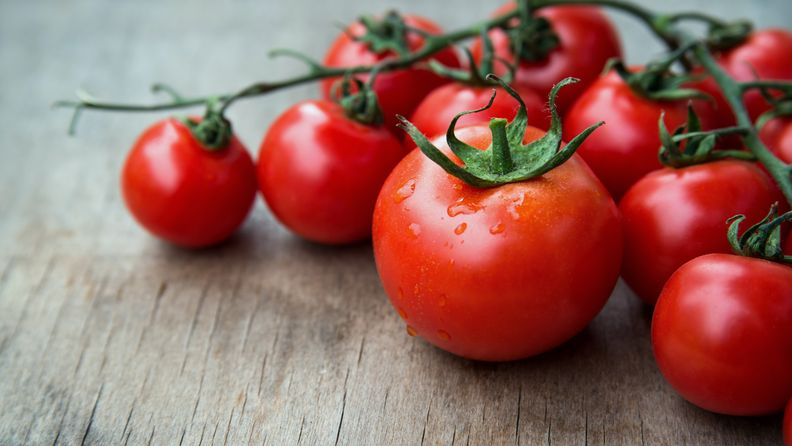 tomaatti