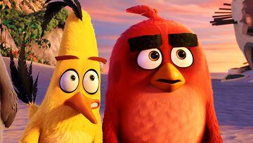 Angry Birds elokuva (9)