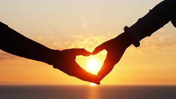 rakkaus, käsi
