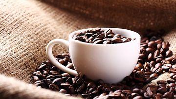 kahvi, kahvipavut