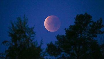 Kuun Pimennys