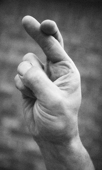 Käsi (1)
