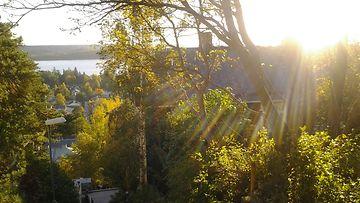 Syysaurinkoa Pispalassa Tampereella. Kuva: Jarkko Ylänen