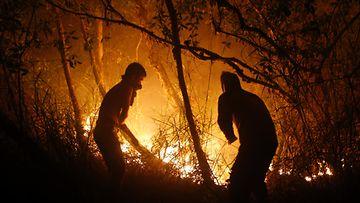 Indonesia, metsäpalot, liekit, sammutus