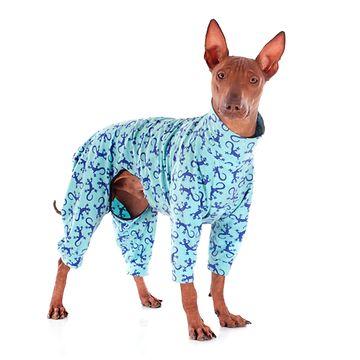 Koira takissa (4)