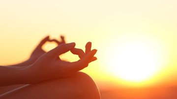 Meditointia