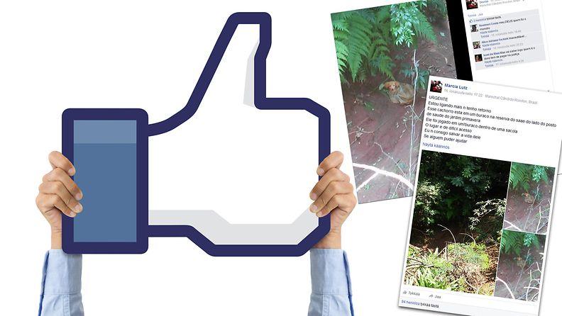 Kuvituskuva ja kuvakaappaus Facebookista