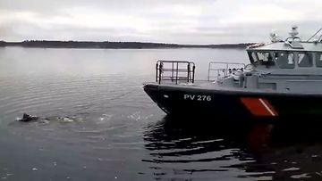 Länsi-Suomen merivartiosto  Västra Finlands sjöbevakningssektion ruutukaappaus