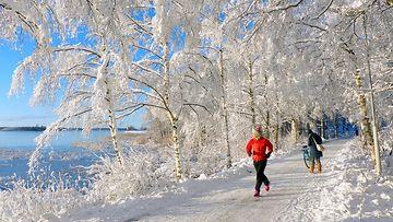 Ulkoilua aurinkoisessa talvimaisemassa Vaasassa 23. marraskuuta 2015. Kuva: Matti Hietala
