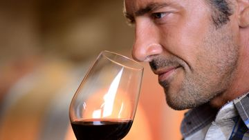 viini, snobi