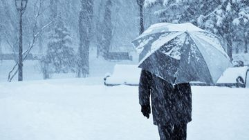 talvi, mies, kävellä