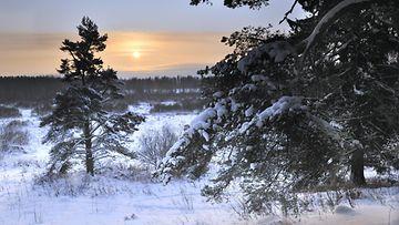lumitilanne joulu 2018 Katso lumitilanne: Lumiraja jakaa Suomen – täällä joulu on  lumitilanne joulu 2018