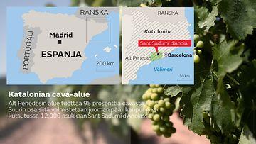 Cava alueet