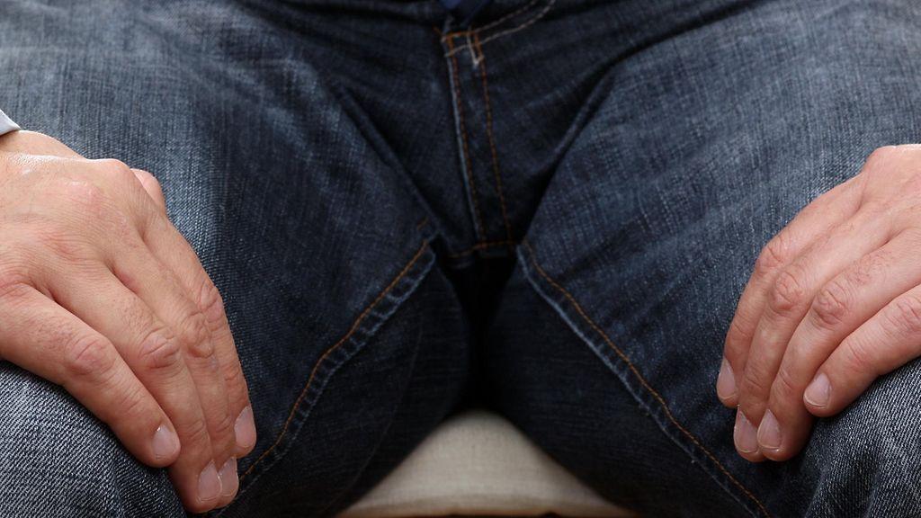 Poimintoja penis