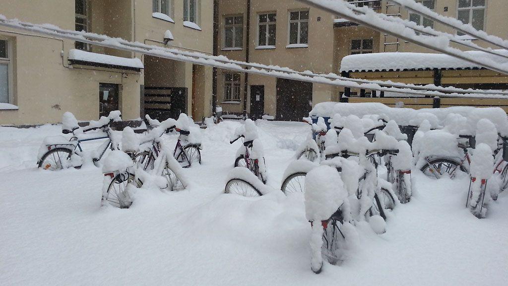Lumi Laukut Suomi : Lumisateet v?istym?ss? viikonloppuna siperiasta virtaa