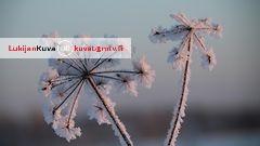 Lounaassa pilkahtaa aurinko – huomenna luvassa senteitt�in lunta