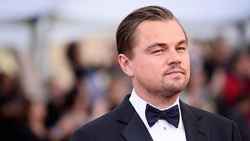 Leonardo DiCaprio 30.1.2016 1