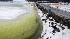 Meteorologi: Talven surkein s��viikko edess�