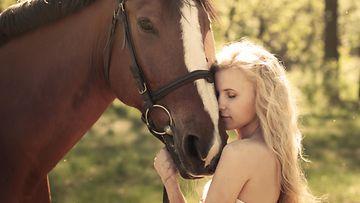 Hevoset osaavat tulkita ihmisten ilmeitä, kertoo uusi selvitys.