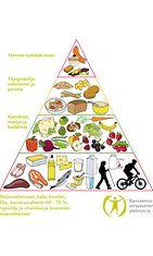 Lihavuusleikatun ruokakolmio