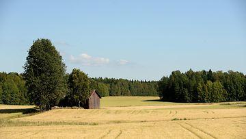 maaseutu