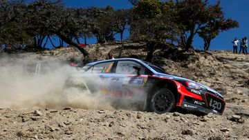 Thierry Neuville (1)