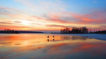 Alkukevään värikäs taivas. Kuva: Kalevi Elmala, Lahti