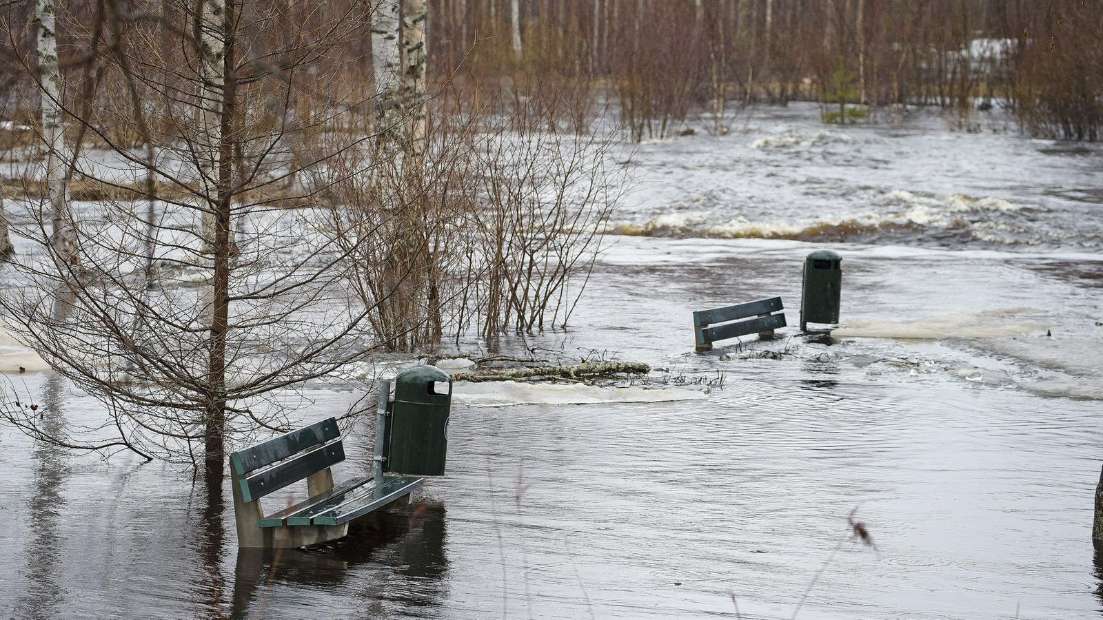 Tulva Uutiset
