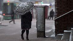 Winter is coming: Talvi tulee todenn�k�isesti ensi keskiviikkona – luvassa lunta ja hyyt�vi� myrskytuulia