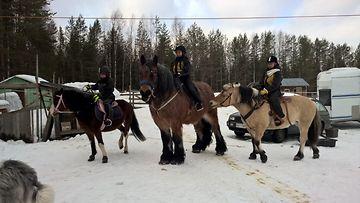 hevoset lähödssä lenkille kuhmossa