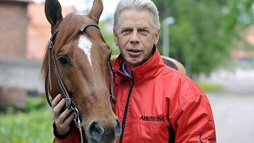 Kari vepsä hevonen